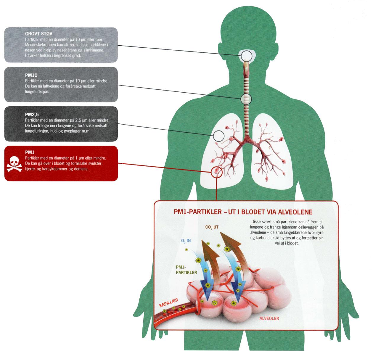 luft i kroppen